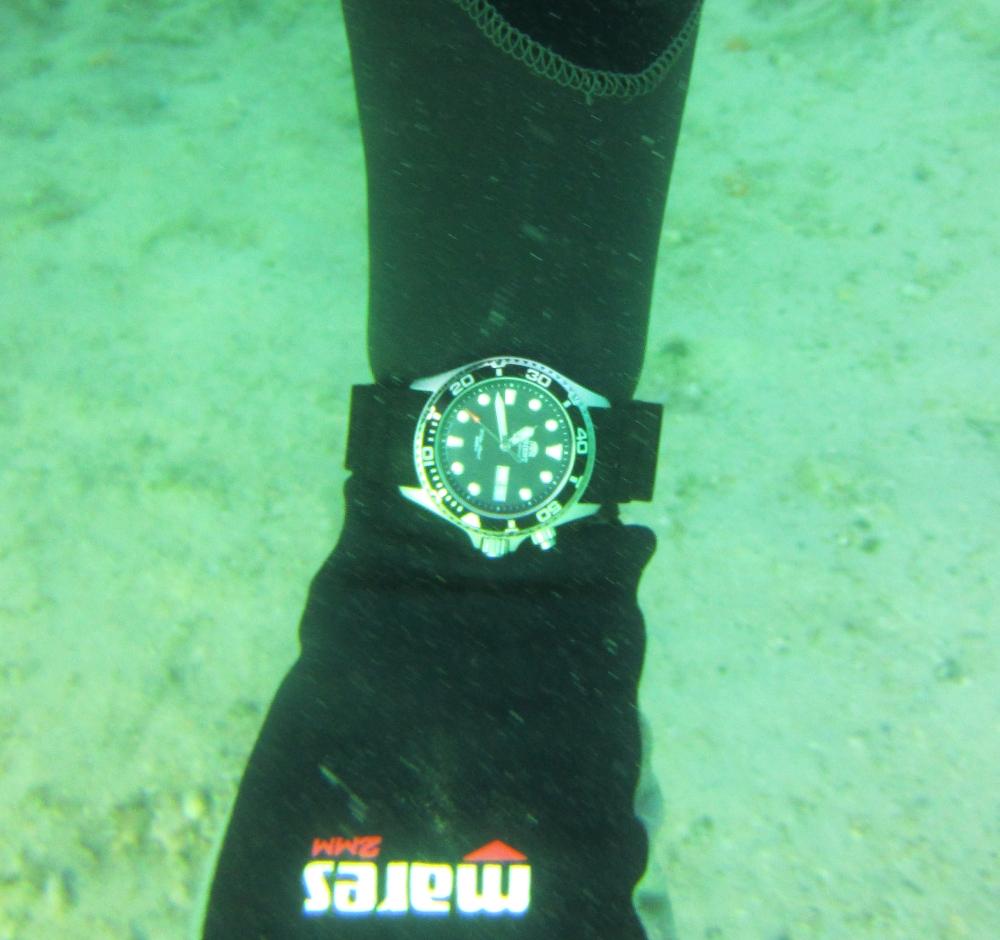 Sunday Dive: 24-03-2013 - Kwinana - Orient Ray Kwinana%20Grain%20Jetty%2024-03-2013%20Orient%203