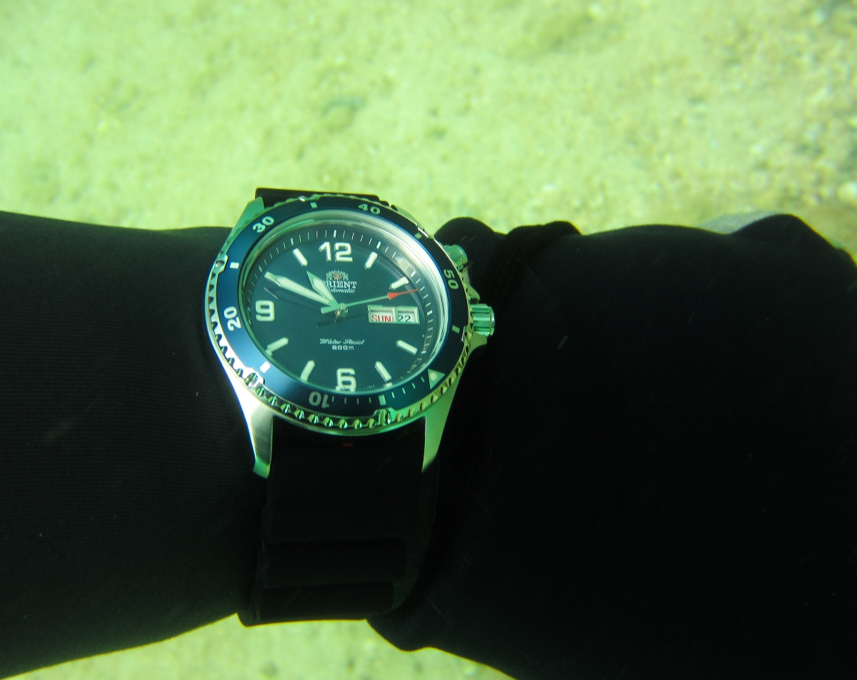 Sunday Dive: 21-04-2013 Rockingham - Orient Mako Orient%20Mako%20Rockingham%2021-04-2013.jpg%20(4)