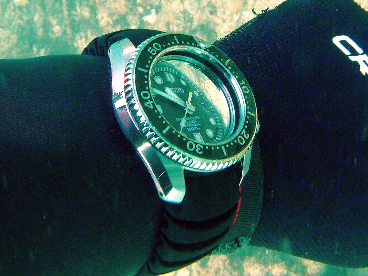Some dive pics from a site at day and then night - Seiko SBDX001 Seiko%20SBDX001%20Robb%27s%2001-06-2013%203