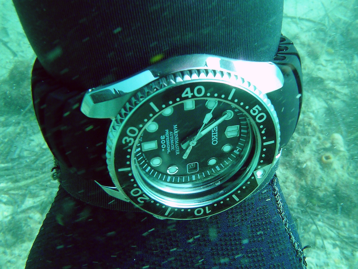 Some dive pics from a site at day and then night - Seiko SBDX001 Seiko%20SBDX001%20Robb%27s%2001-06-2013%204